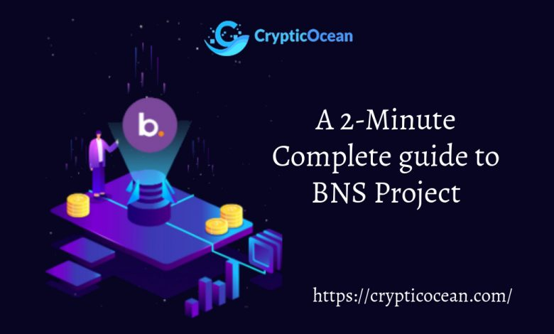 BNS Project