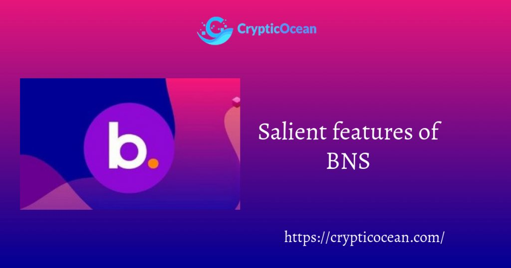 Salient features of BNS